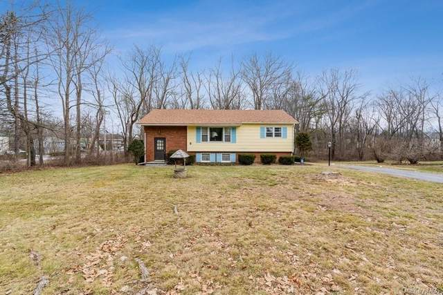 3 Whiteford Drive, Pleasant Valley, NY 12569 (MLS #H6091504) :: Kevin Kalyan Realty, Inc.