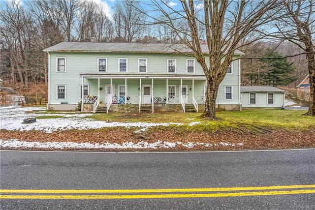 276 Old Route 22, Wassaic, NY 12592 (MLS #H6091562) :: Signature Premier Properties