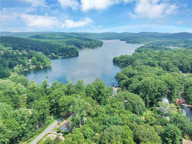 17 Lee Court, Putnam Valley, NY 10579 (MLS #H6091707) :: Nicole Burke, MBA | Charles Rutenberg Realty