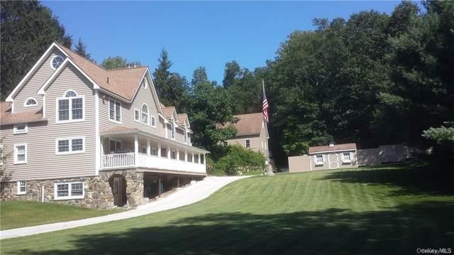 554 Ludingtonville Road, Holmes, NY 12531 (MLS #H6091828) :: Mark Seiden Real Estate Team