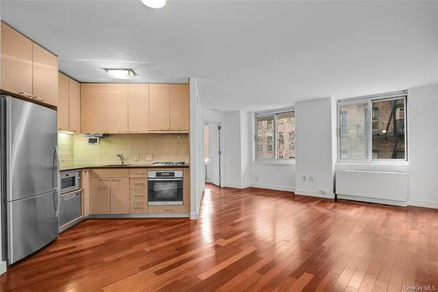 206 E 95th Street 5A, Newyork, NY 10128 (MLS #H6091874) :: Keller Williams Points North - Team Galligan