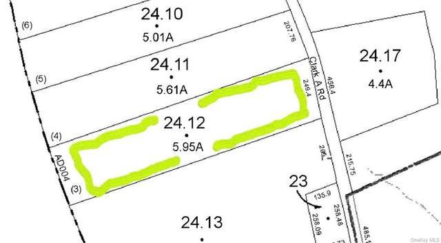 Lot 24.5 Clark A Road, A/K/A Tr 112, Fallsburg, NY 12733 (MLS #H6091902) :: Nicole Burke, MBA | Charles Rutenberg Realty