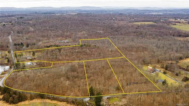 Traver Road, Pleasant Valley, NY 12569 (MLS #H6091953) :: Mark Seiden Real Estate Team