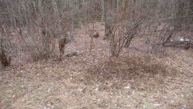 Square Woods Road, Lagrangeville, NY 12540 (MLS #H6091968) :: Barbara Carter Team
