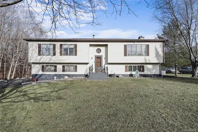 5 Wright Court, Lagrangeville, NY 12540 (MLS #H6092010) :: Kevin Kalyan Realty, Inc.
