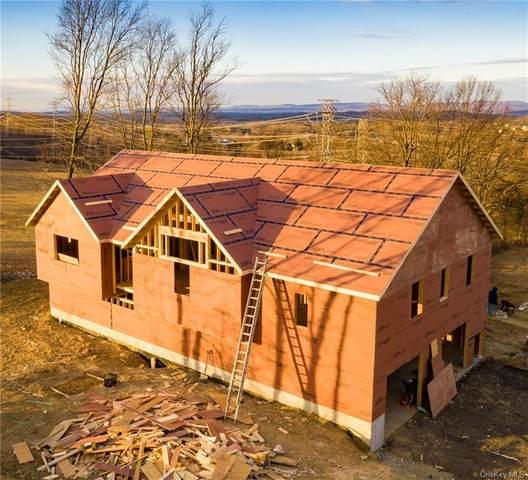 15 Richies Way, Pleasant Valley, NY 12569 (MLS #H6092042) :: McAteer & Will Estates | Keller Williams Real Estate