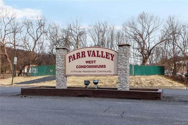 202 Parr Meadow Drive, Newburgh, NY 12550 (MLS #H6092189) :: The McGovern Caplicki Team