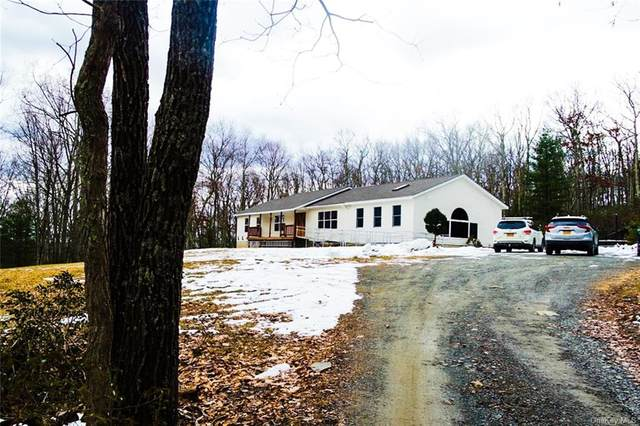 70 Australia Road, Glen Spey, NY 12737 (MLS #H6092285) :: Mark Seiden Real Estate Team