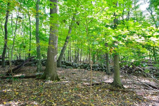 0 June Lot 1 Road, Call Listing Agent, CT 06903 (MLS #H6092316) :: Frank Schiavone with William Raveis Real Estate