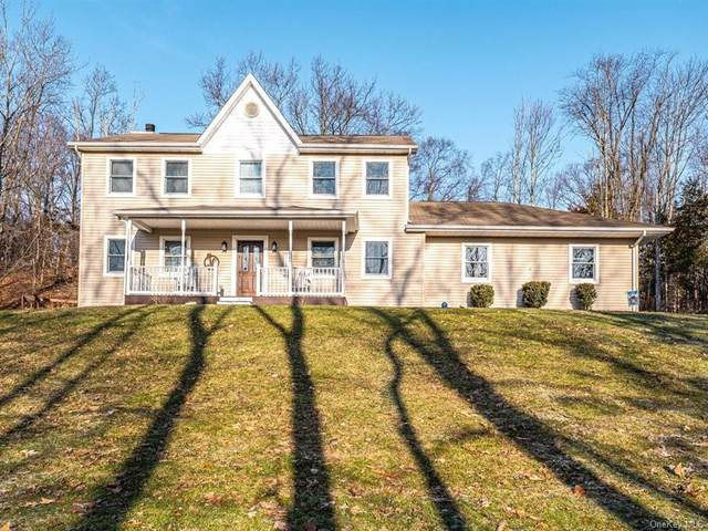 92 Restdale Road, Chester, NY 10918 (MLS #H6092335) :: William Raveis Baer & McIntosh