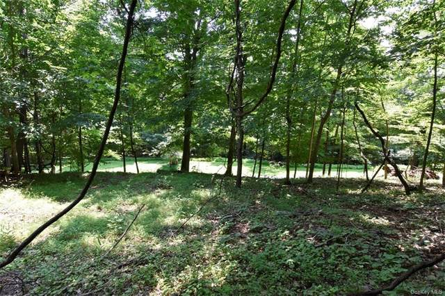Cyrus Field Road, Irvington, NY 10533 (MLS #H6092352) :: Kevin Kalyan Realty, Inc.