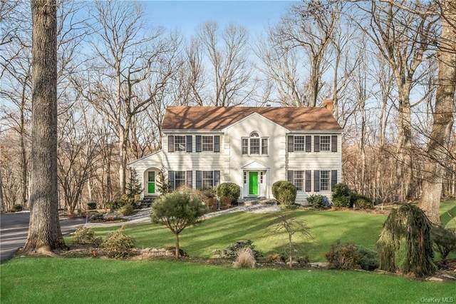53 Joan Drive, Chappaqua, NY 10514 (MLS #H6092369) :: Mark Boyland Real Estate Team