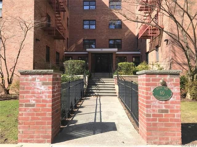 60 White Oak Street 5-D, New Rochelle, NY 10801 (MLS #H6092403) :: William Raveis Baer & McIntosh