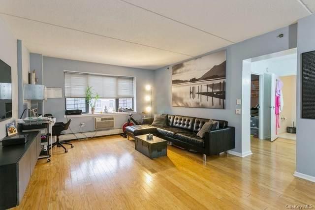 1275 Grant Avenue #2E, Bronx, NY 10456 (MLS #H6092485) :: Carollo Real Estate