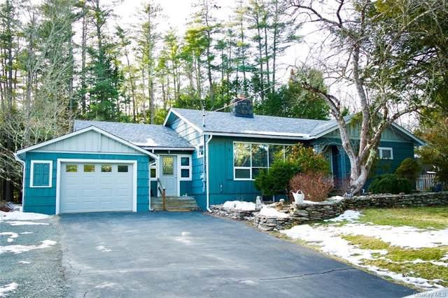 5987 Nys Route 97, Narrowsburg, NY 12764 (MLS #H6092559) :: McAteer & Will Estates | Keller Williams Real Estate