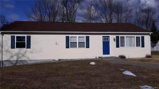 44 Grandview Avenue, Pawling, NY 12564 (MLS #H6092731) :: McAteer & Will Estates | Keller Williams Real Estate