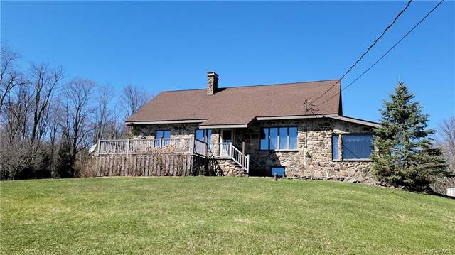 229 Obernburg Road, Fremont, NY 12767 (MLS #H6093514) :: Barbara Carter Team