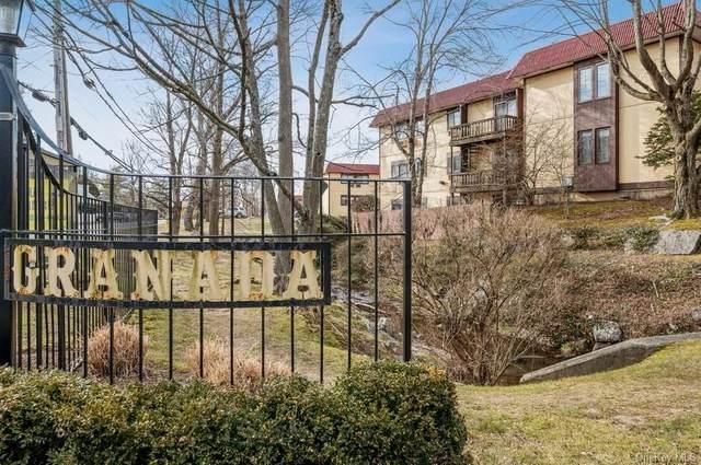 11 Granada Crescent #6, White Plains, NY 10603 (MLS #H6093574) :: Mark Seiden Real Estate Team