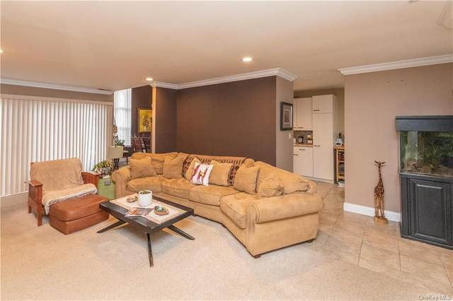 206 Arlin Road, Monroe, NY 10950 (MLS #H6093650) :: William Raveis Baer & McIntosh