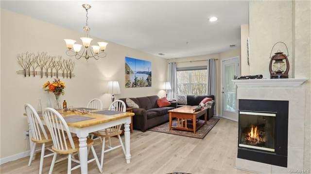 116 Viewpoint Terrace, Peekskill, NY 10566 (MLS #H6093719) :: McAteer & Will Estates | Keller Williams Real Estate