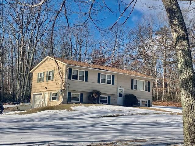 64 Kingfisher Trail, Wurtsboro, NY 12790 (MLS #H6093731) :: Kevin Kalyan Realty, Inc.