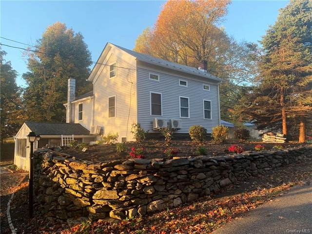 35 Vlei Road, Rhinebeck, NY 12572 (MLS #H6093740) :: Mark Seiden Real Estate Team