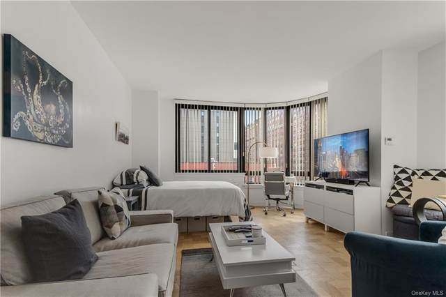 455 E 86th Street 5E, Newyork, NY 10028 (MLS #H6093812) :: Signature Premier Properties