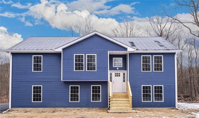 133 Plattekill Road, Marlboro, NY 12542 (MLS #H6093916) :: McAteer & Will Estates | Keller Williams Real Estate