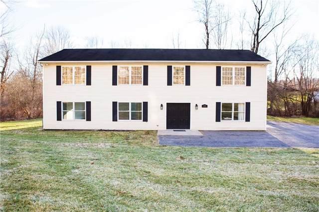 65 Ludingtonville Road, Holmes, NY 12531 (MLS #H6093972) :: McAteer & Will Estates | Keller Williams Real Estate