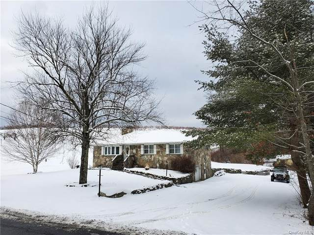 85 Perkinsville Road, Highland, NY 12528 (MLS #H6094028) :: William Raveis Baer & McIntosh
