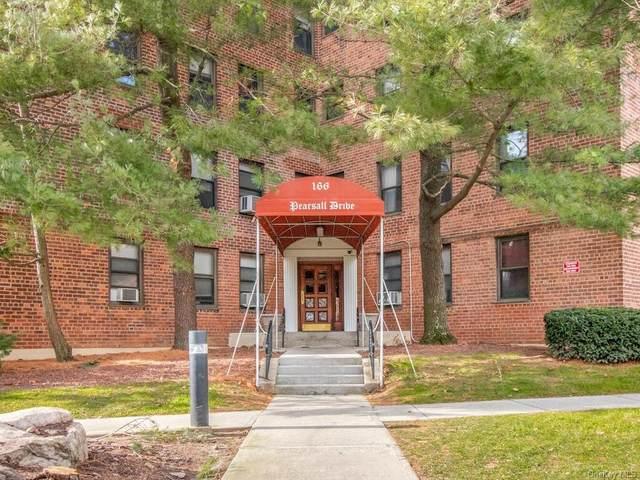 166 Pearsall Drive 1H, Mount Vernon, NY 10552 (MLS #H6094052) :: Shalini Schetty Team