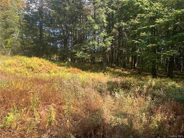 Rennison Road, Grahamsville, NY 12740 (MLS #H6094290) :: McAteer & Will Estates   Keller Williams Real Estate