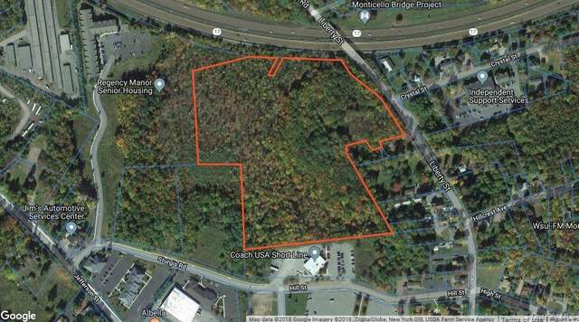 Liberty Street, Monticello, NY 12701 (MLS #H6094293) :: Cronin & Company Real Estate