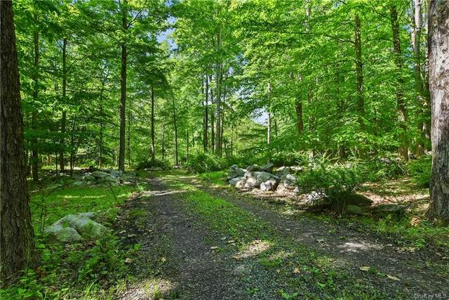 179 Bell Hollow Road, Putnam Valley, NY 10579 (MLS #H6094393) :: Mark Seiden Real Estate Team
