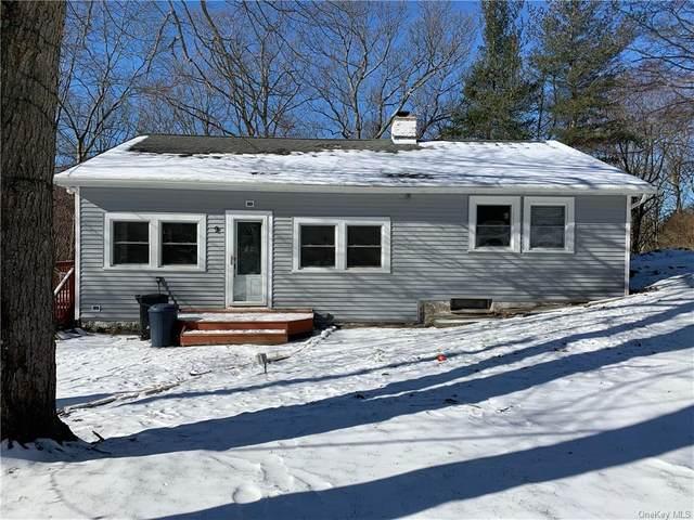 9 Hamilton Drive, Carmel, NY 10512 (MLS #H6094455) :: Mark Boyland Real Estate Team