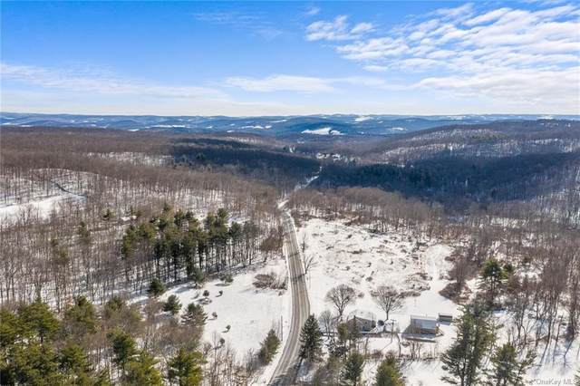 1886 State Route 82, Ancram, NY 12502 (MLS #H6094647) :: McAteer & Will Estates | Keller Williams Real Estate