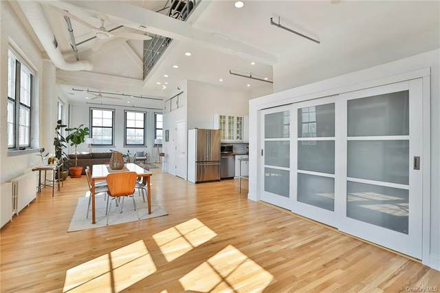 52 Webster Avenue #40, New Rochelle, NY 10801 (MLS #H6094660) :: Barbara Carter Team