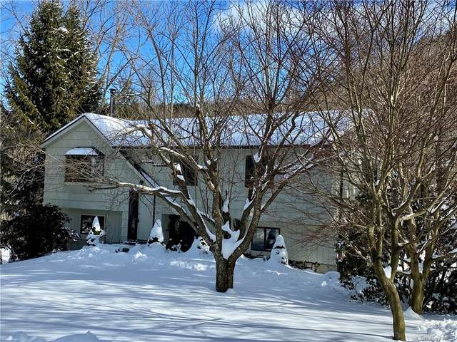 140 Mountain View Drive, Holmes, NY 12531 (MLS #H6094830) :: McAteer & Will Estates | Keller Williams Real Estate