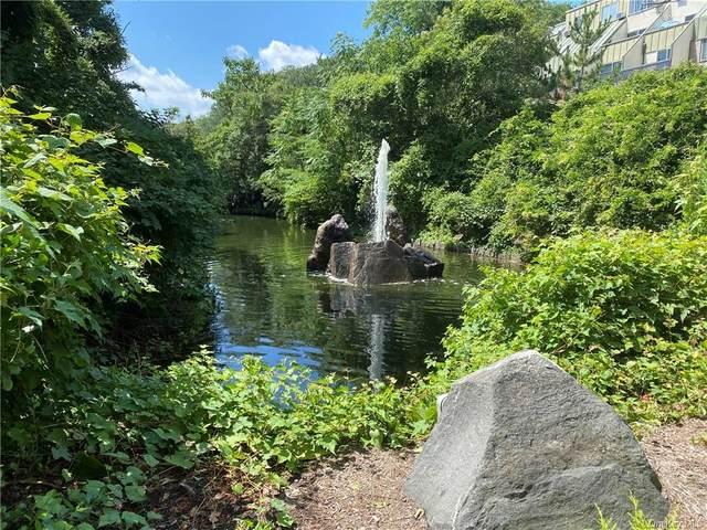 2 Fountain Lane 2N, Scarsdale, NY 10583 (MLS #H6094889) :: Howard Hanna | Rand Realty