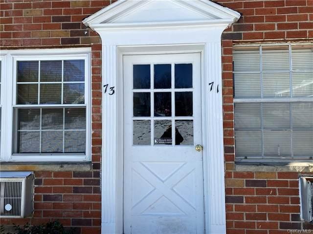3 Colonial Road #71, Beacon, NY 12508 (MLS #H6095190) :: William Raveis Baer & McIntosh