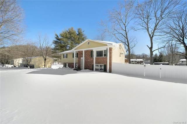 68 Branchville Road, Valley Cottage, NY 10989 (MLS #H6095213) :: Howard Hanna Rand Realty