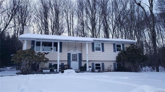 7513 State Route 42, Grahamsville, NY 12740 (MLS #H6095399) :: McAteer & Will Estates   Keller Williams Real Estate