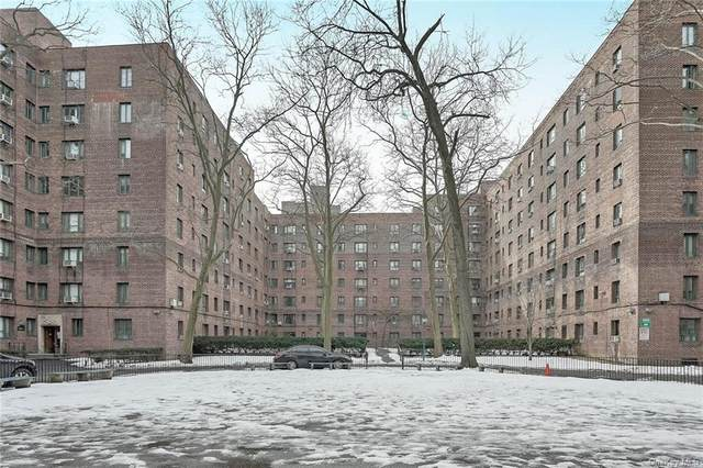 1470 Parkchester Road 1B, Bronx, NY 10462 (MLS #H6095569) :: The McGovern Caplicki Team