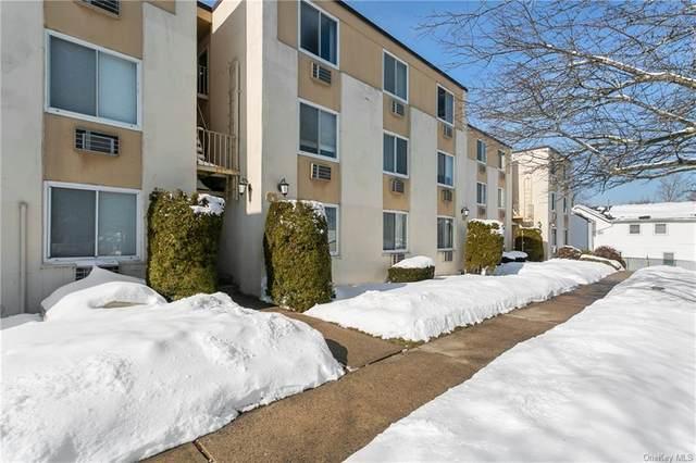 141 E Lake Boulevard E1, Mahopac, NY 10541 (MLS #H6095592) :: William Raveis Baer & McIntosh