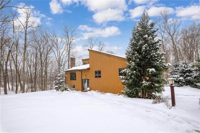 39 Acorn Road, Brewster, NY 10509 (MLS #H6095601) :: Kendall Group Real Estate | Keller Williams