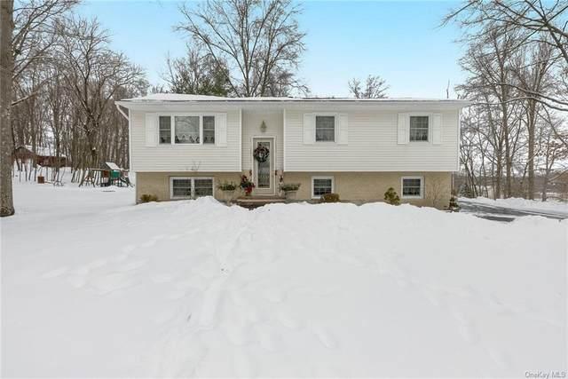 4 Ivy Lane, Walden, NY 12586 (MLS #H6095612) :: William Raveis Baer & McIntosh