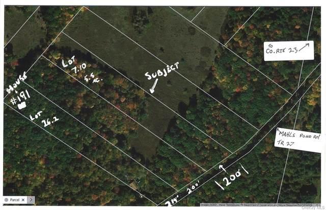 lot 7.10 Mahls Pond Road, Narrowsburg, NY 12764 (MLS #H6096401) :: McAteer & Will Estates | Keller Williams Real Estate