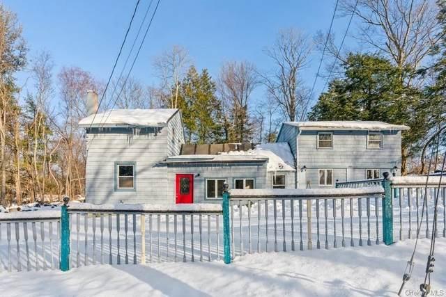 445 Haviland Drive, Patterson, NY 12563 (MLS #H6096413) :: McAteer & Will Estates | Keller Williams Real Estate