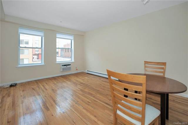 35 Hudson Street 3C, Yonkers, NY 10701 (MLS #H6096482) :: Kendall Group Real Estate | Keller Williams