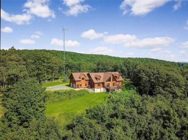 390 Mount Zion Road, Marlboro, NY 12542 (MLS #H6096490) :: McAteer & Will Estates | Keller Williams Real Estate
